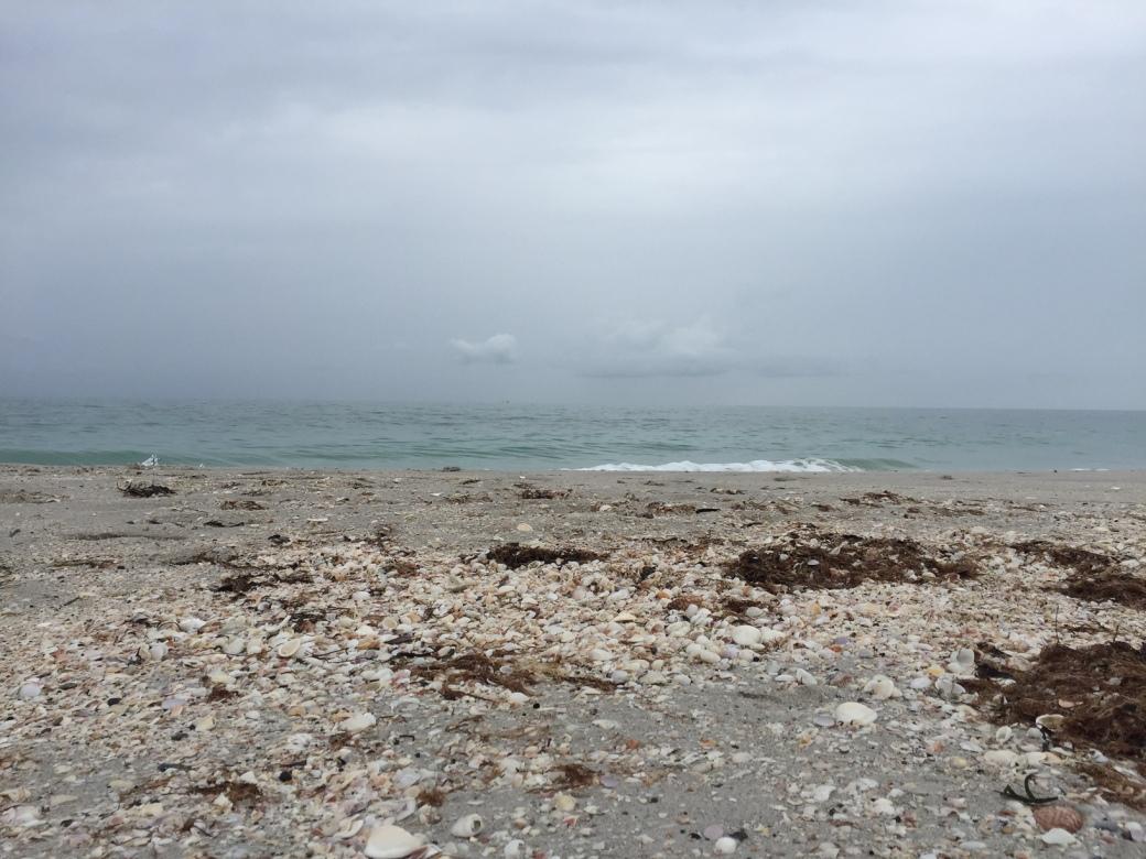 ck_monday beach