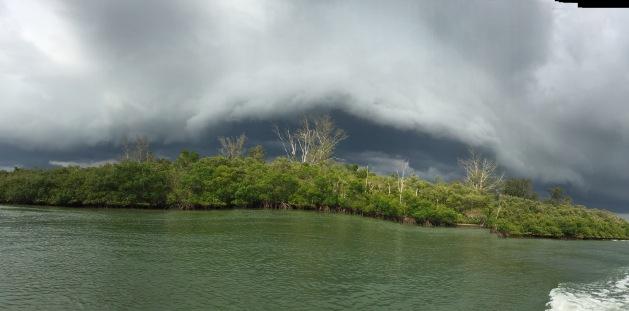 ck_sunday storm