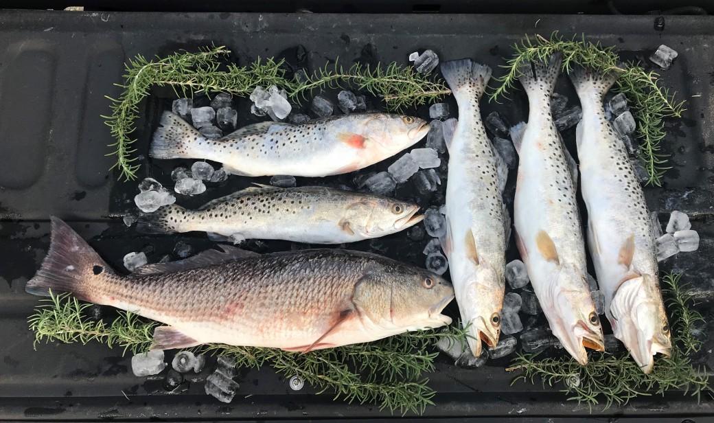 december_fishing