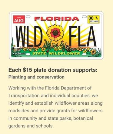 wildflower plate